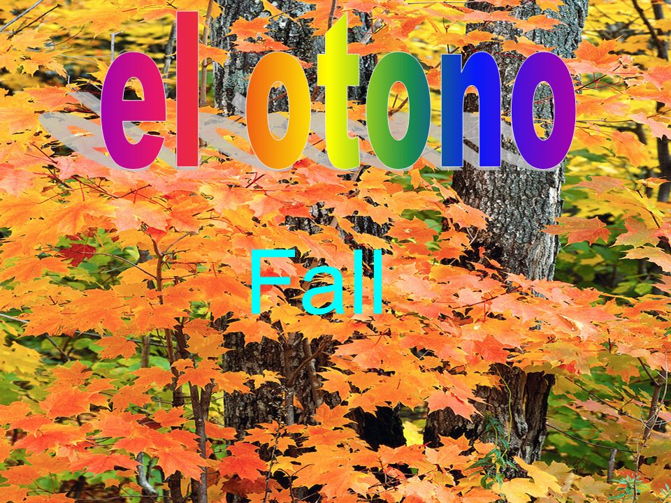 el otono Fall