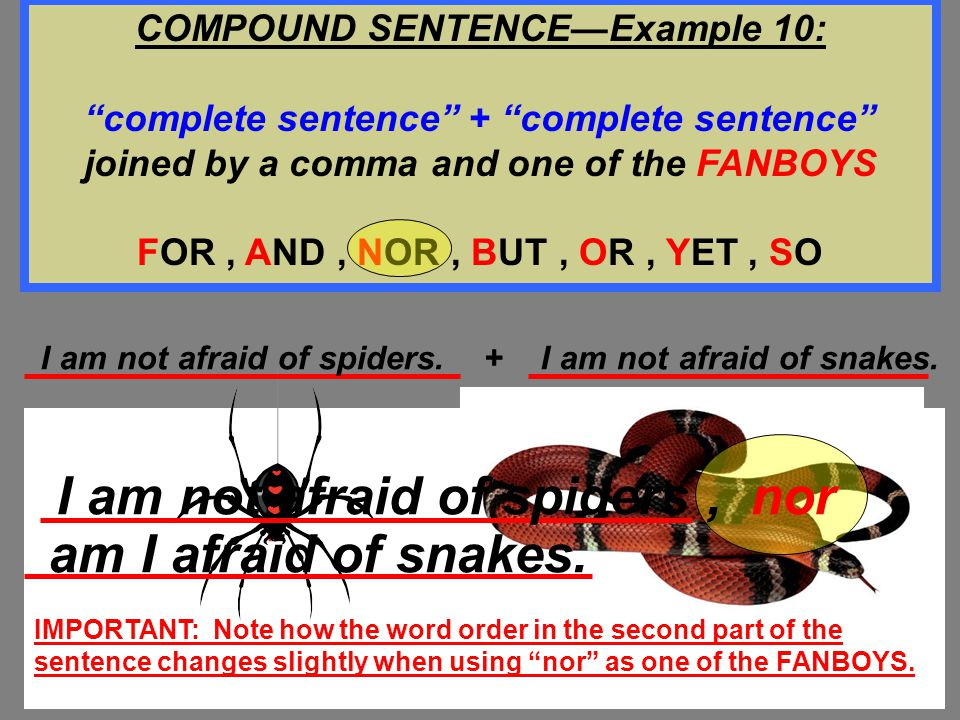 COMPOUND SENTENCE—Example 10: