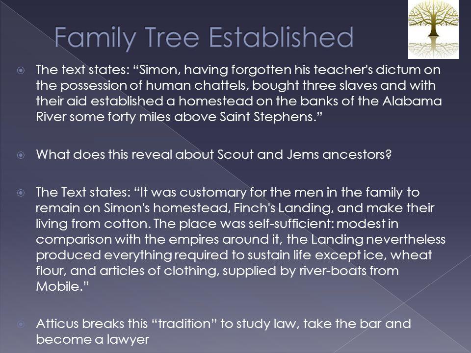 Family Tree Established