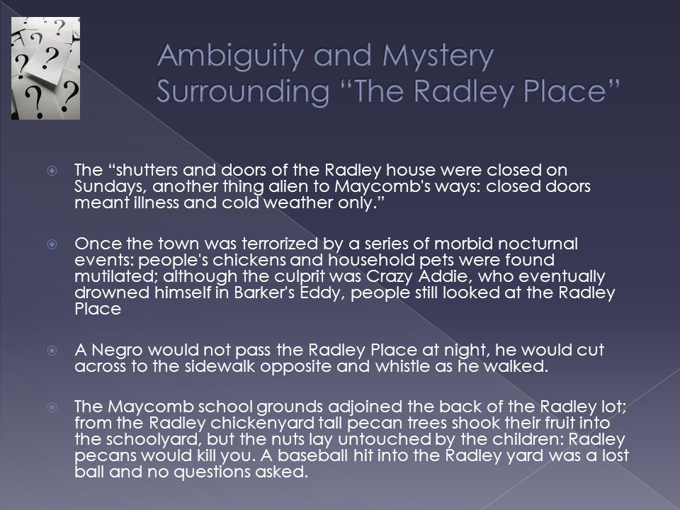 Ambiguity and Mystery Surrounding The Radley Place