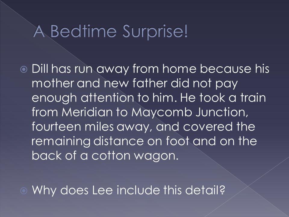 A Bedtime Surprise!