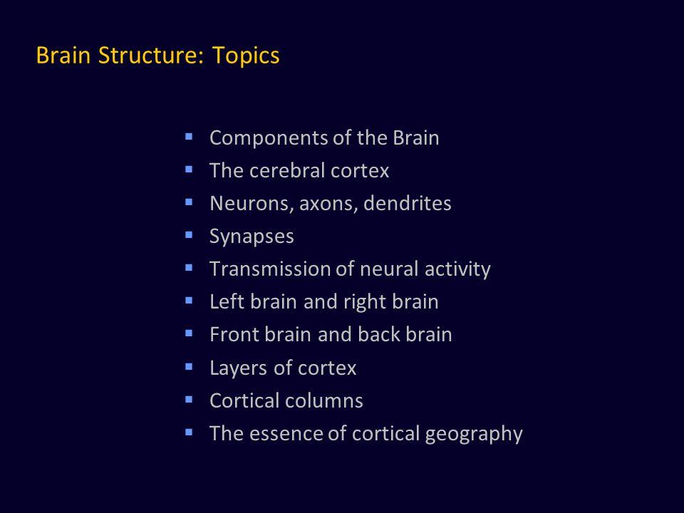 Brain Structure: Topics