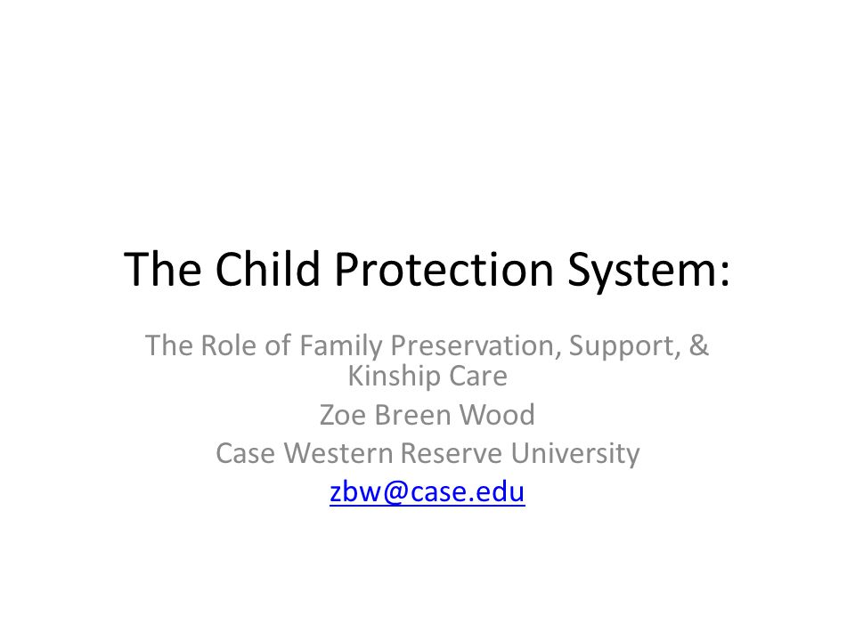 The Child Protection System: