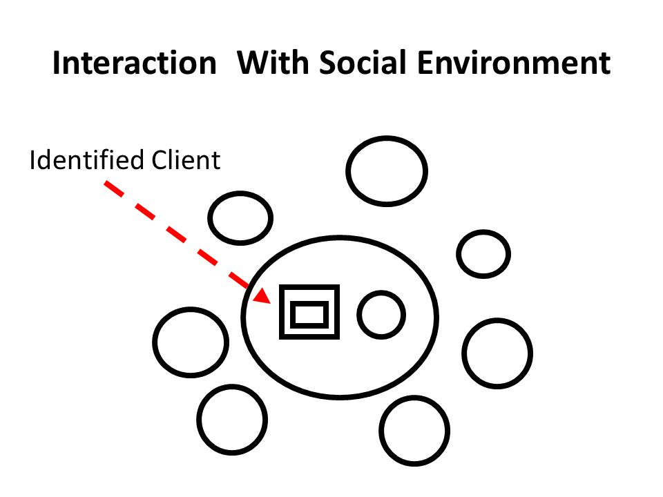 Interaction With Social Environment