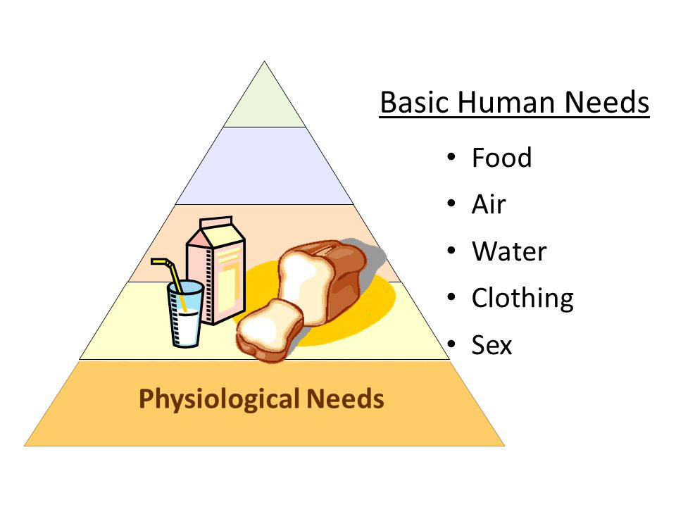Basic Human Needs Food Air Water Clothing Sex Physiological Needs