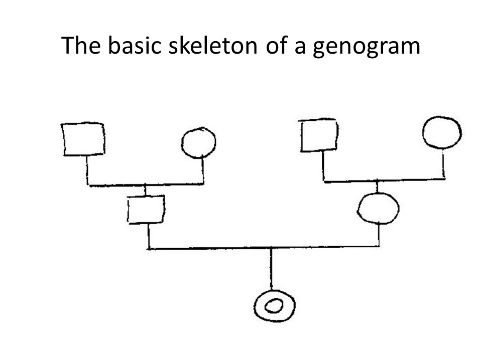 The basic skeleton of a genogram