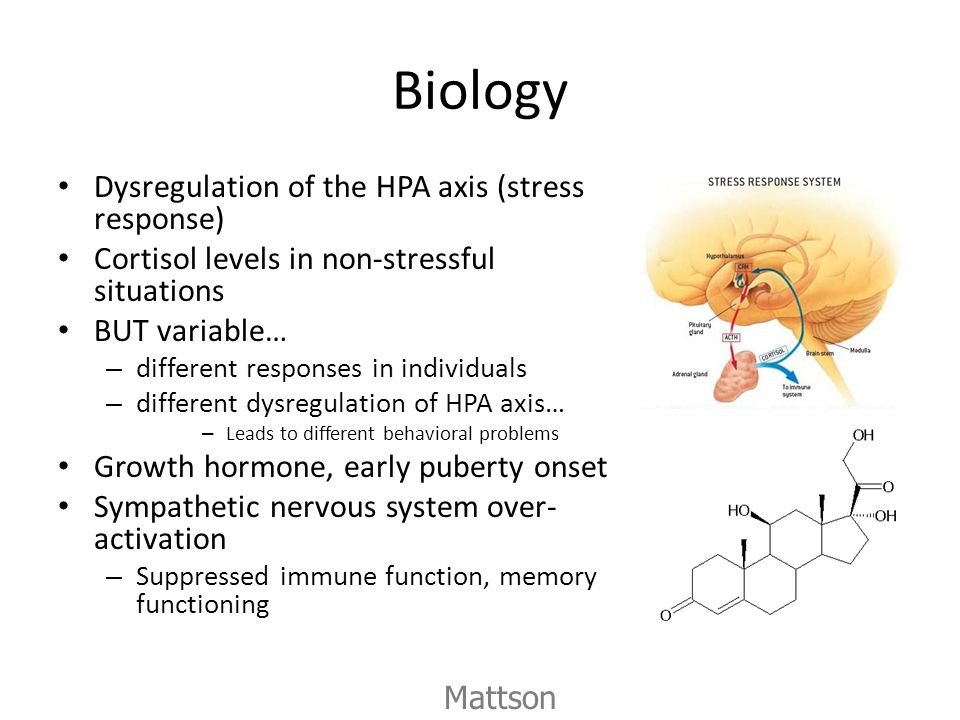 Biology Dysregulation of the HPA axis (stress response) Cortisol levels in non-stressful situations.