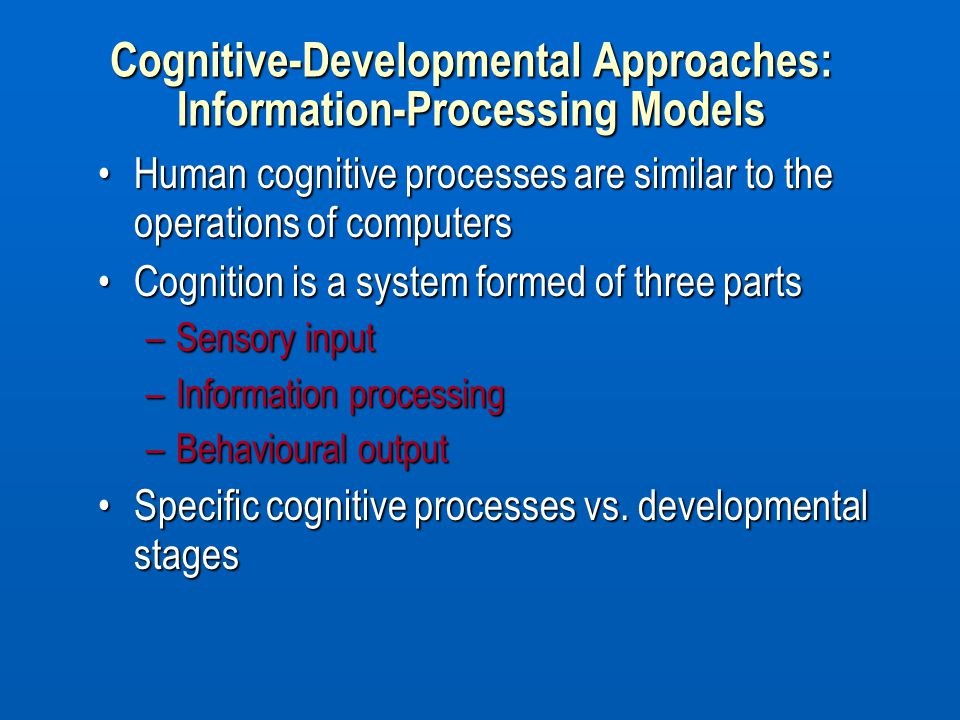 Cognitive-Developmental Approaches: Information-Processing Models