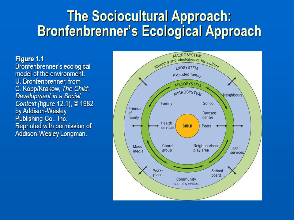 The Sociocultural Approach: Bronfenbrenner's Ecological Approach
