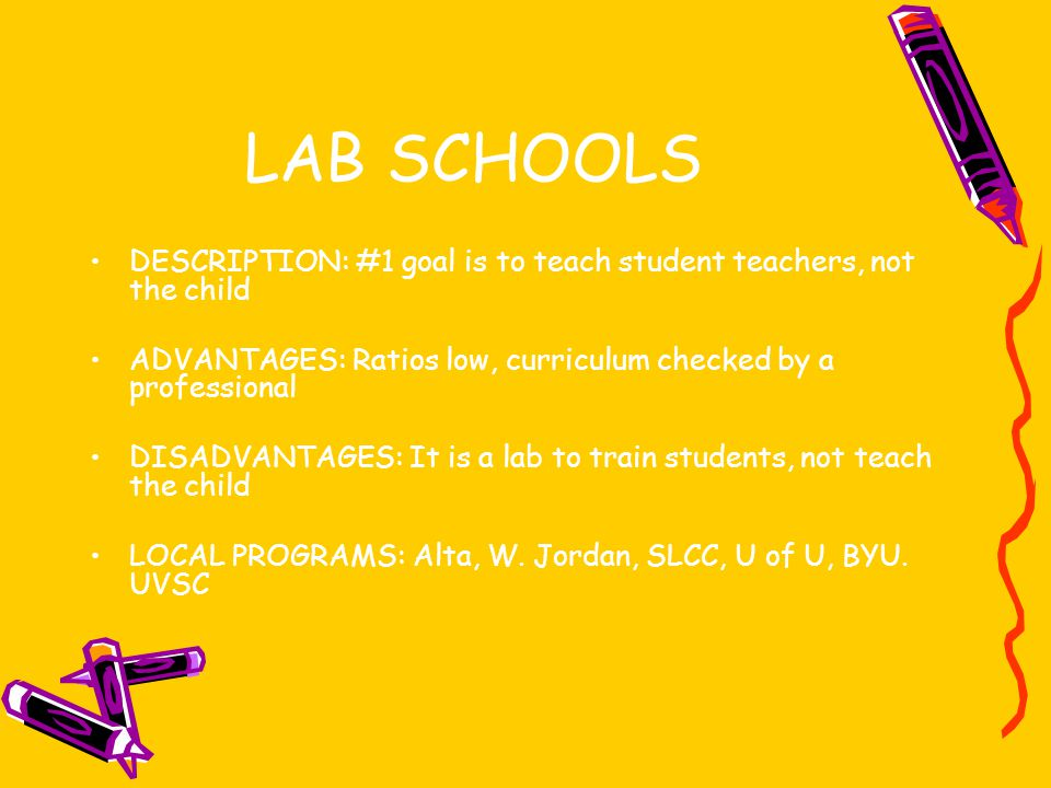 LAB SCHOOLS DESCRIPTION: #1 goal is to teach student teachers, not the child. ADVANTAGES: Ratios low, curriculum checked by a professional.