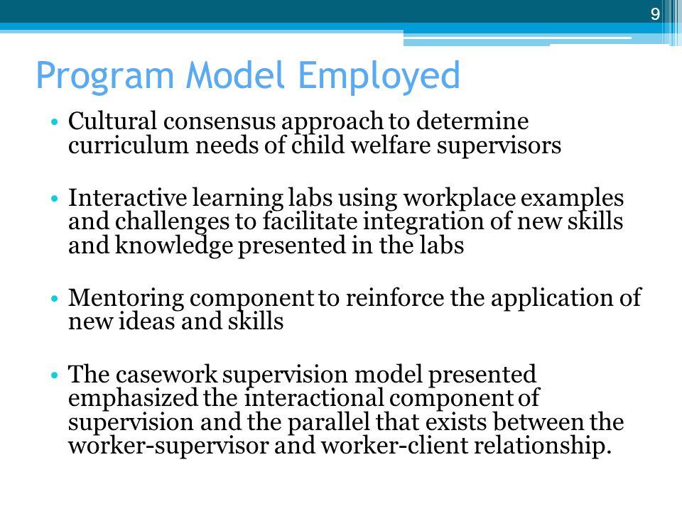 Program Model Employed