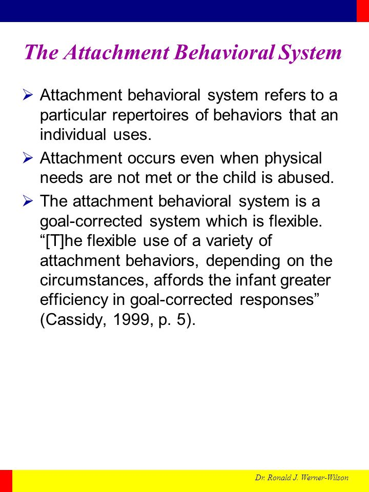 The Attachment Behavioral System