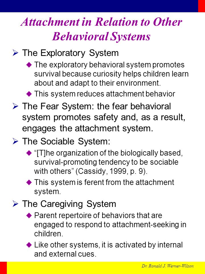Attachment in Relation to Other Behavioral Systems