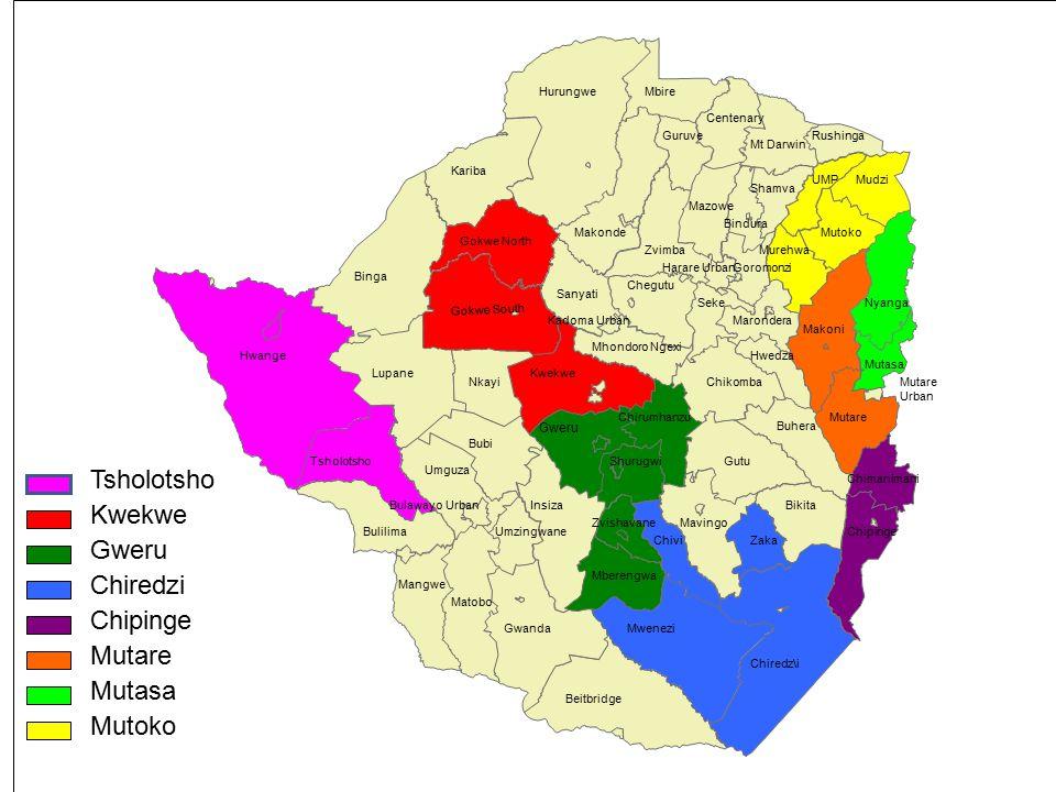 Tsholotsho Kwekwe Gweru Chiredzi Chipinge Mutare Mutasa Mutoko Gweru