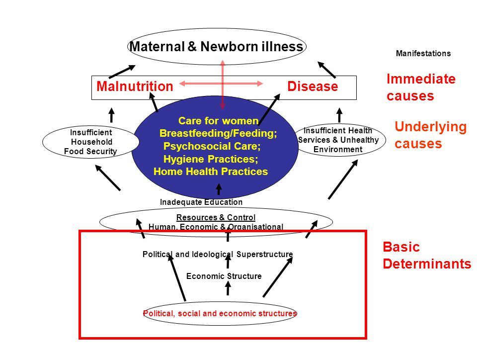 Immediate causes Underlying causes Basic Determinants