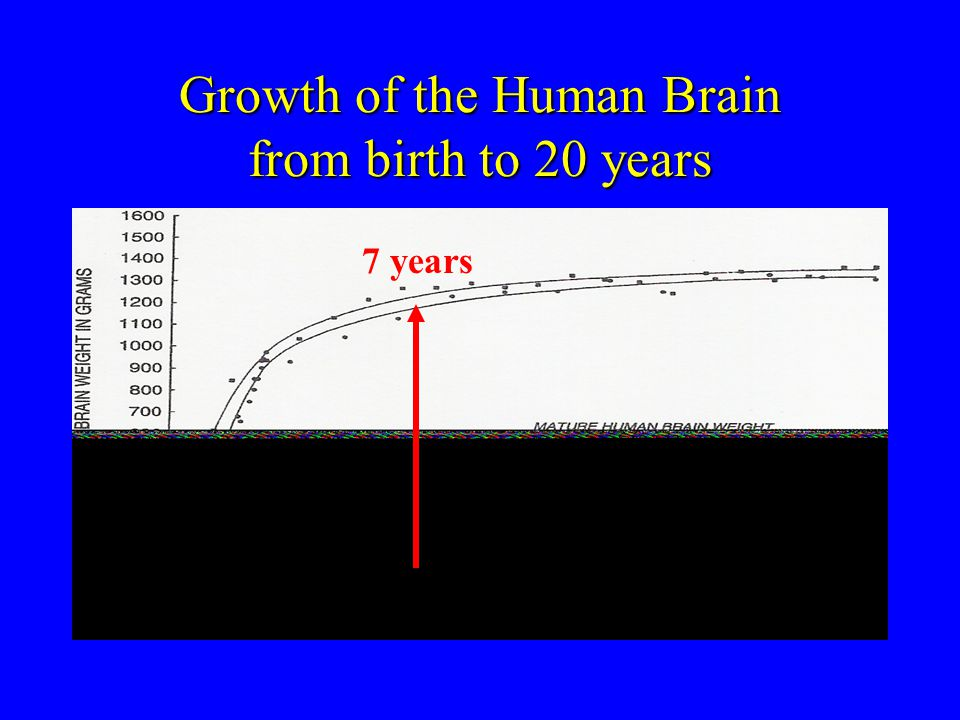 Growth of the Human Brain from birth to 20 years