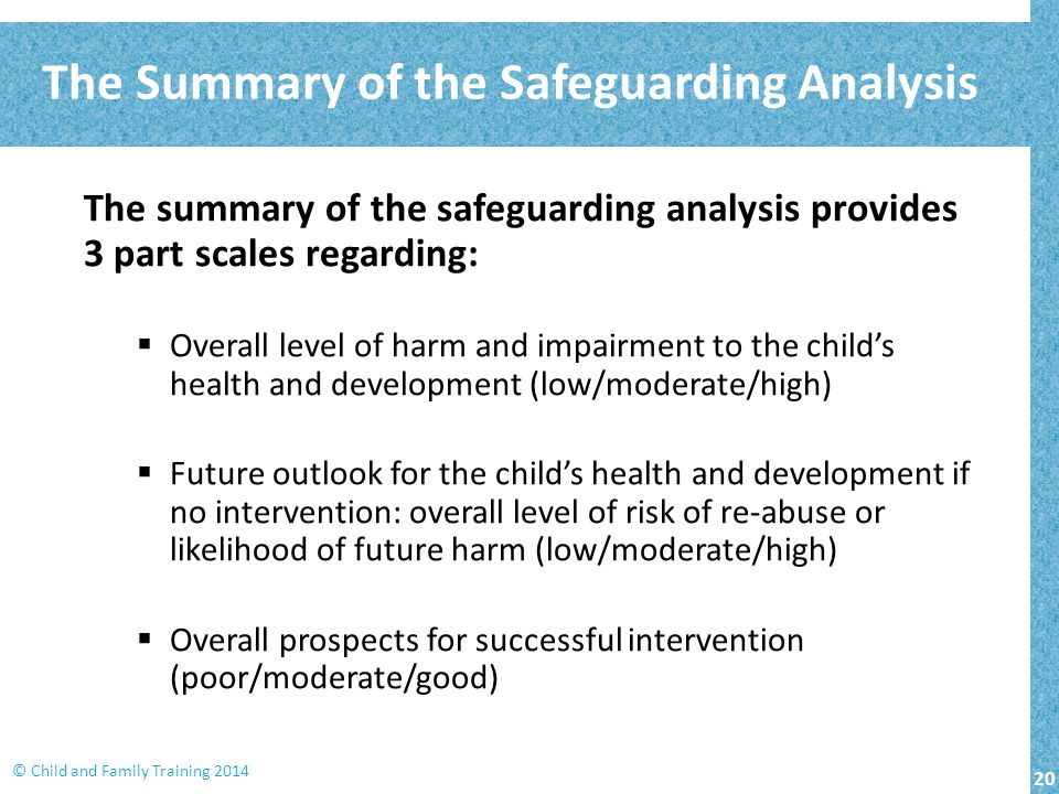 The Summary of the Safeguarding Analysis