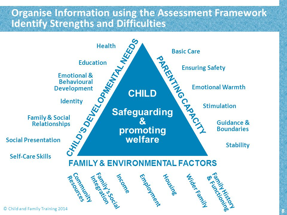 CHILD'S DEVELOPMENTAL NEEDS FAMILY & ENVIRONMENTAL FACTORS