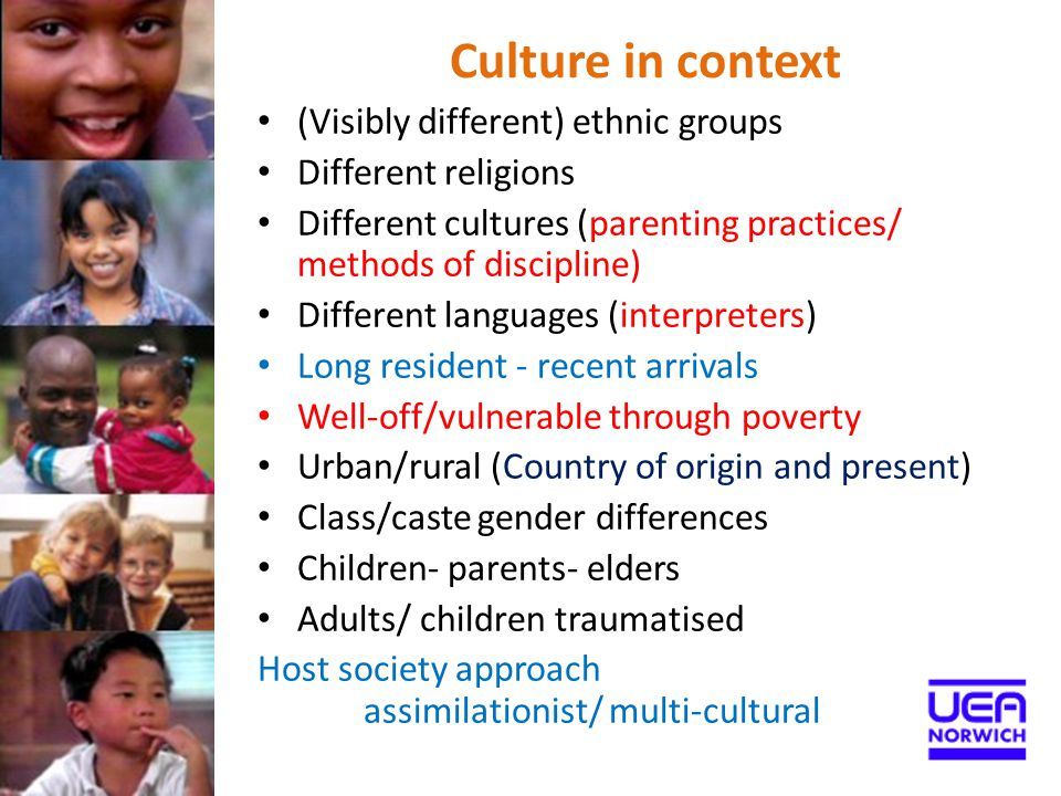 Culture in context (Visibly different) ethnic groups