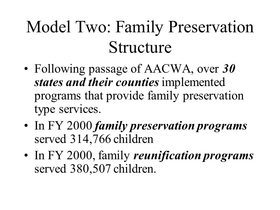 Model Two: Family Preservation Structure