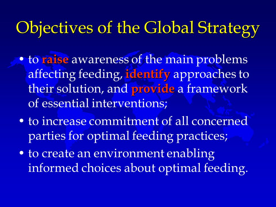 Objectives of the Global Strategy