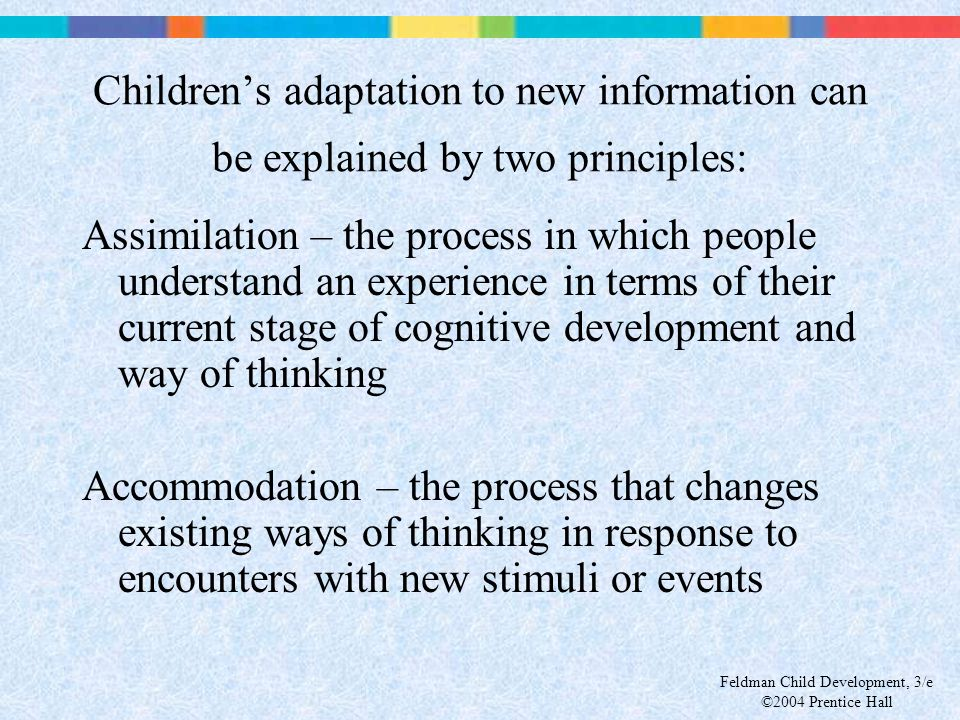 Children's adaptation to new information can be explained by two principles: