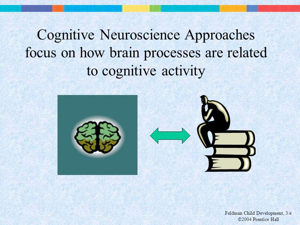 Cognitive Neuroscience Approaches