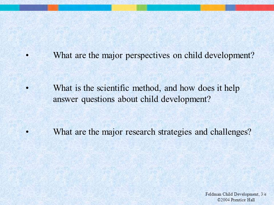 What are the major perspectives on child development