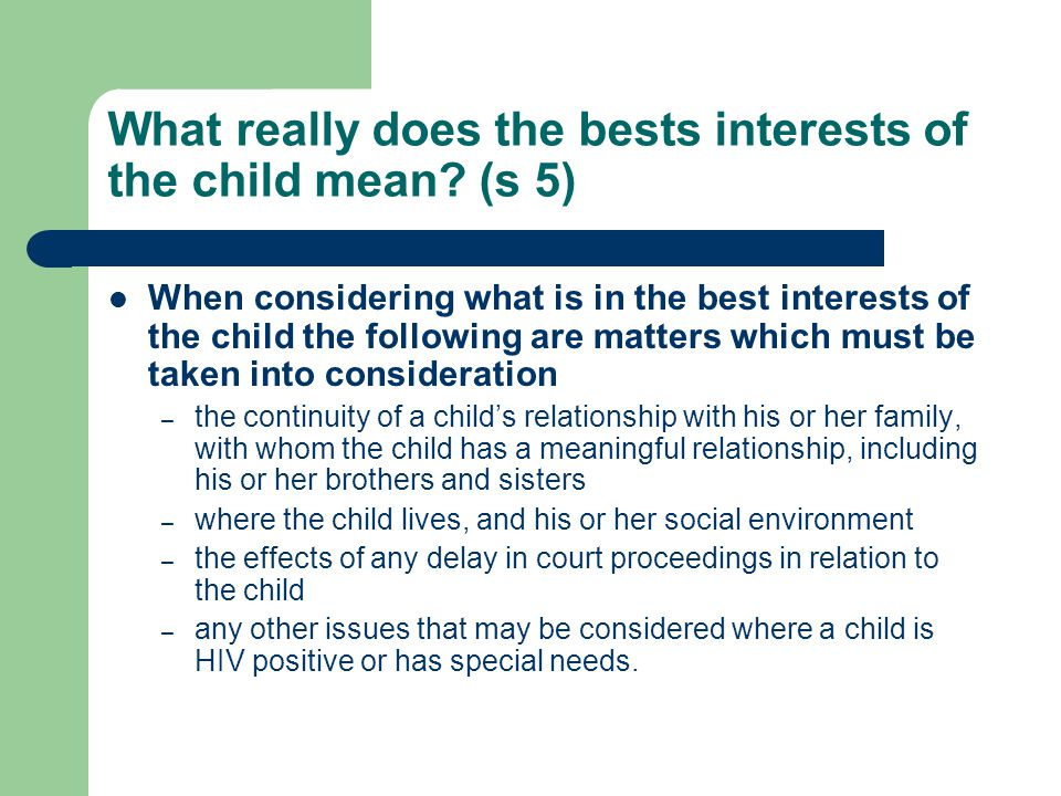 What really does the bests interests of the child mean (s 5)