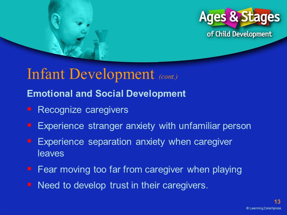 Infant Development (cont.)
