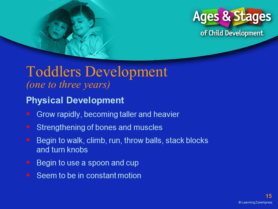 Toddlers Development (one to three years)