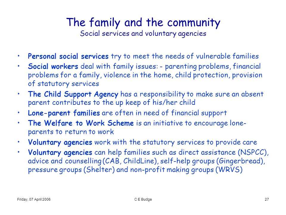 The family and the community Social services and voluntary agencies