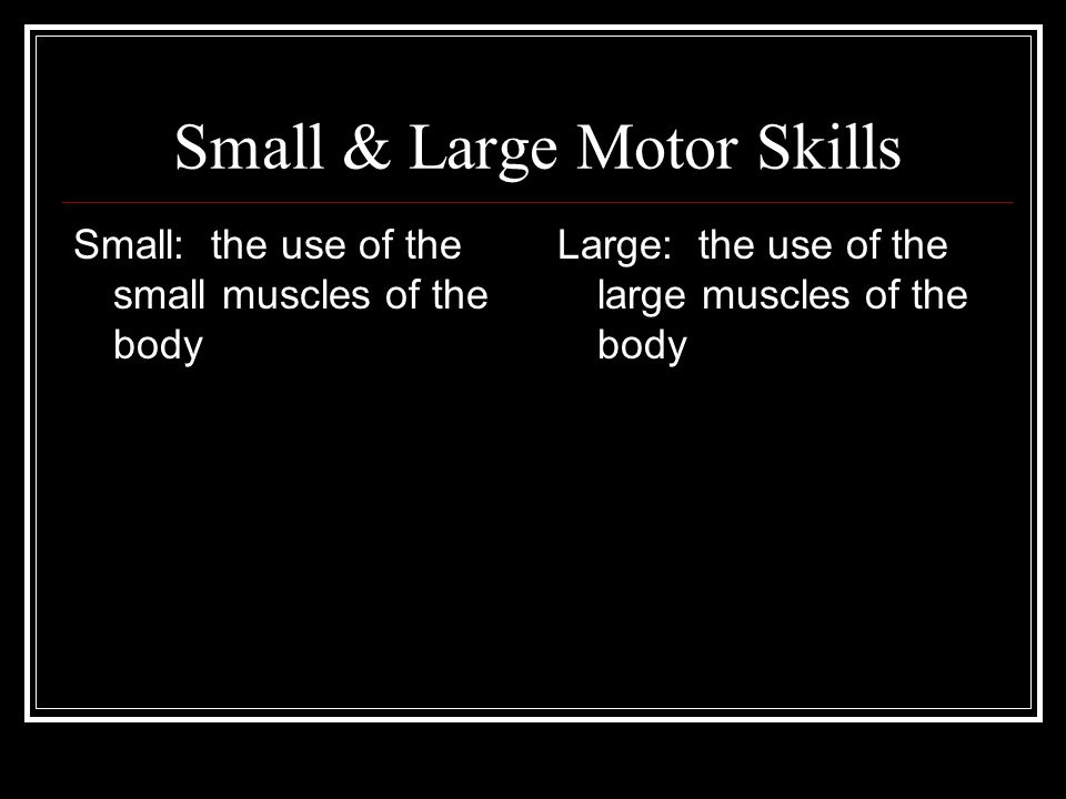 Small & Large Motor Skills