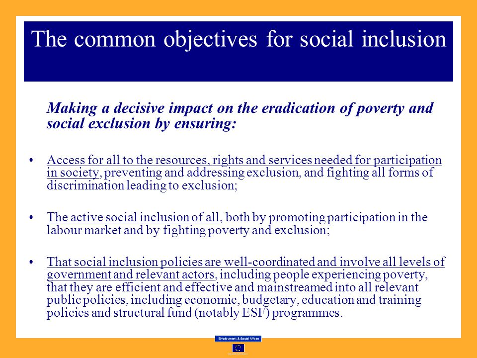 The common objectives for social inclusion