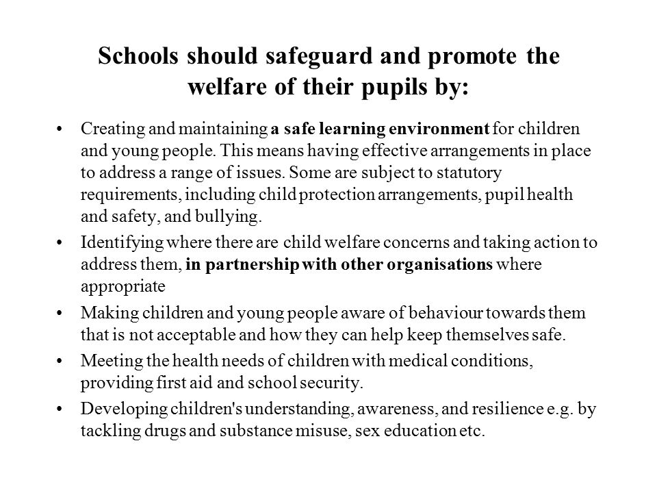 Schools should safeguard and promote the welfare of their pupils by: