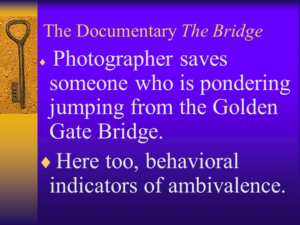 The Documentary The Bridge