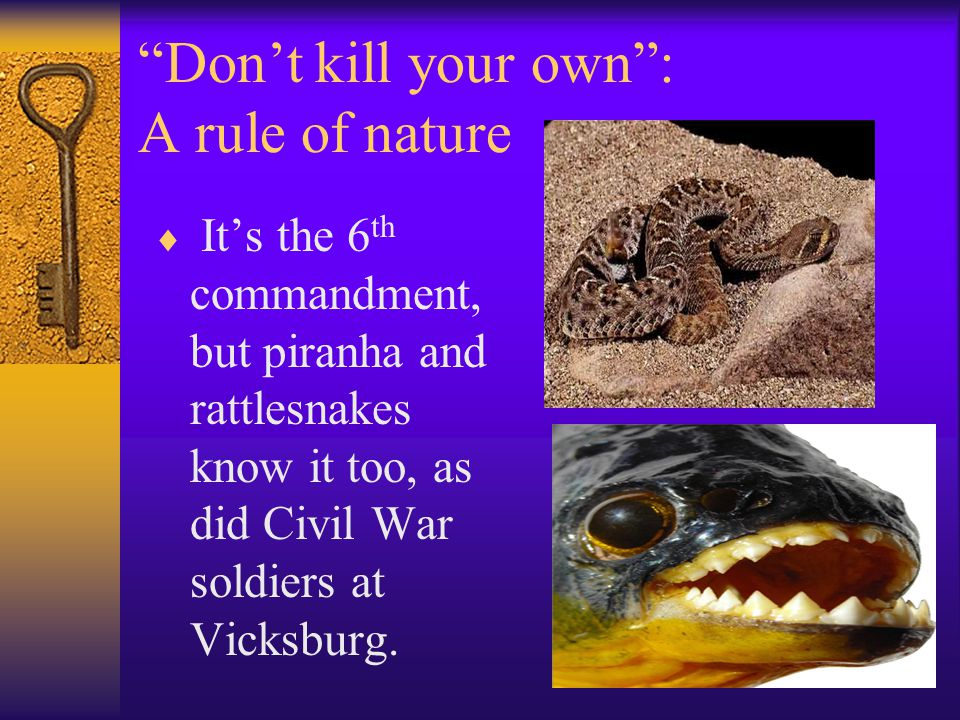 Don't kill your own : A rule of nature