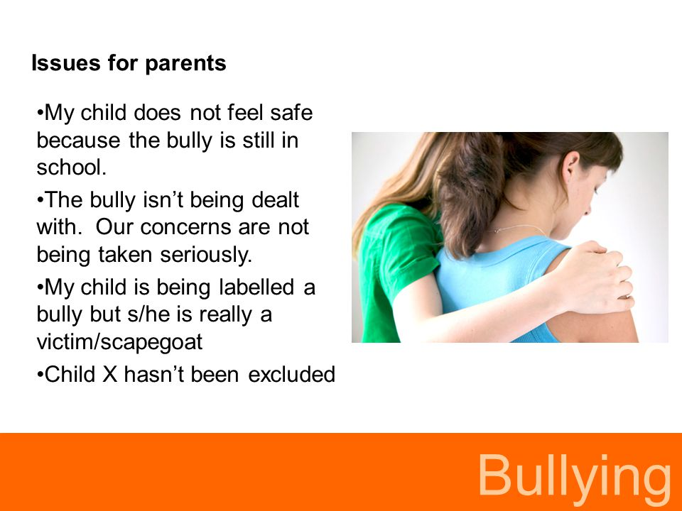 Bullying Issues for parents