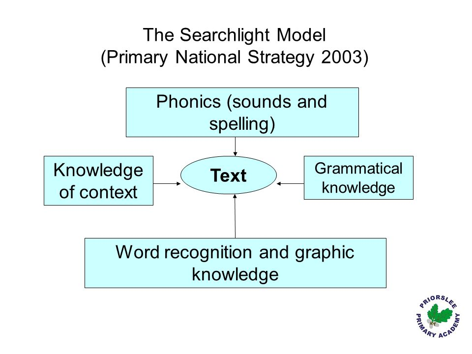 The Searchlight Model (Primary National Strategy 2003)
