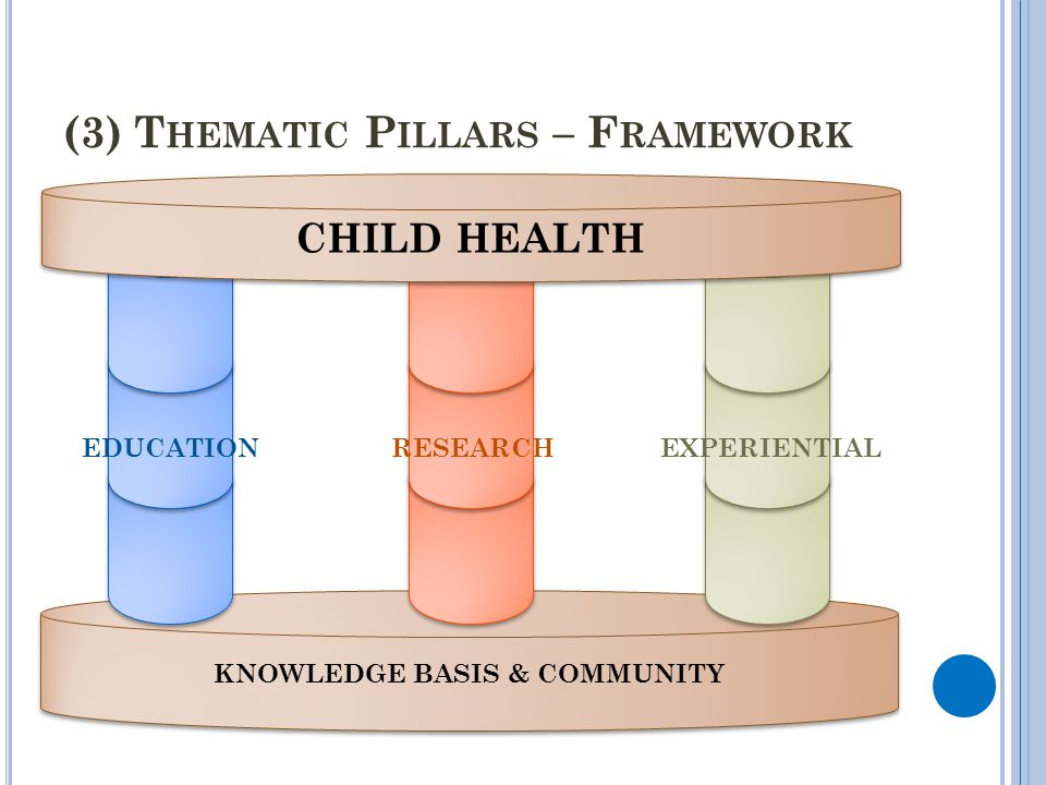 (3) Thematic Pillars – Framework