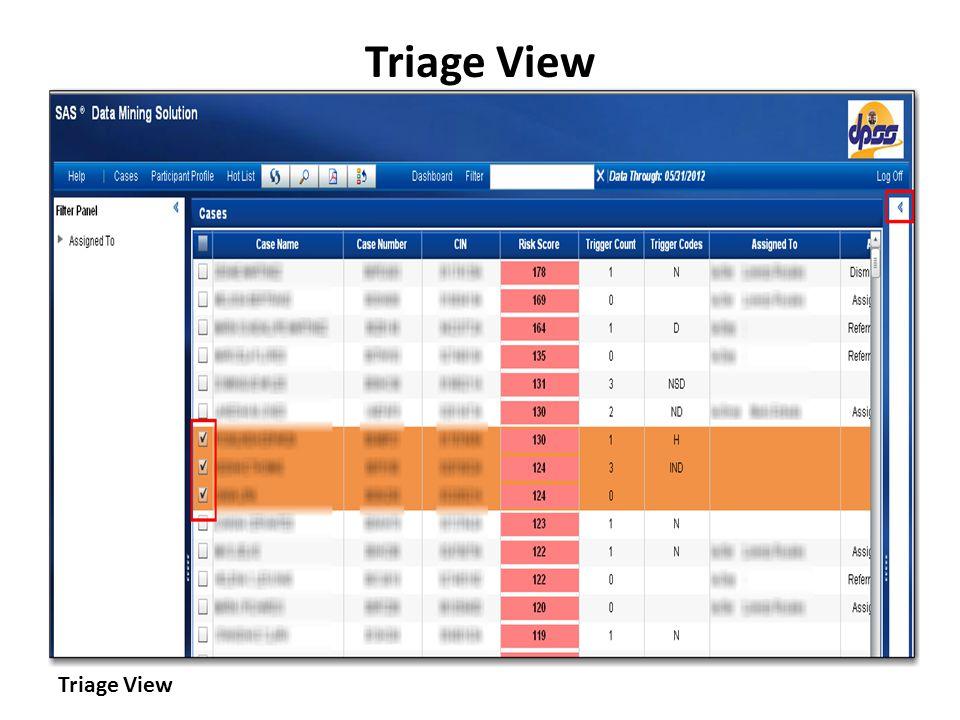 Triage View Triage View Triage View