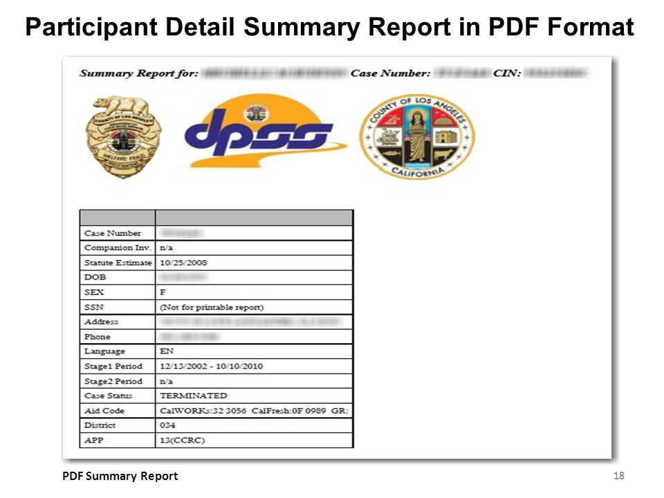 Participant Detail Summary Report in PDF Format