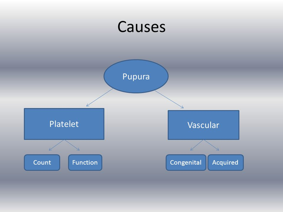 Causes Pupura Platelet Vascular Count Function Congenital Acquired