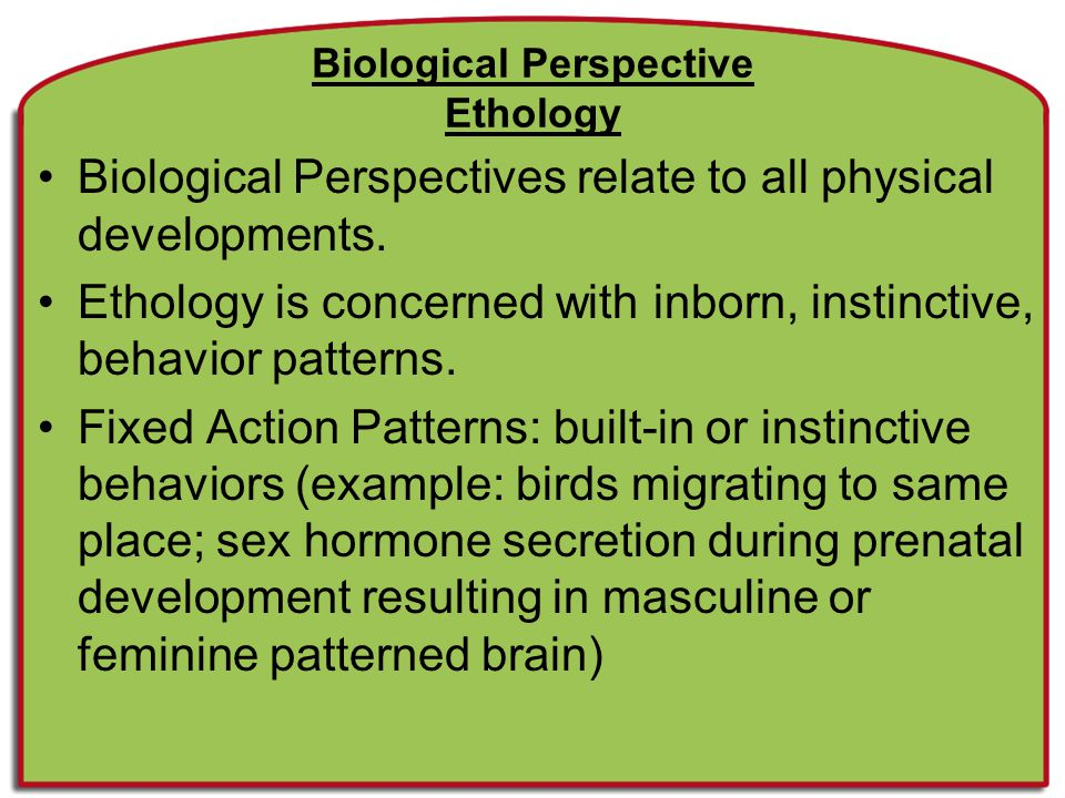 Biological Perspective Ethology