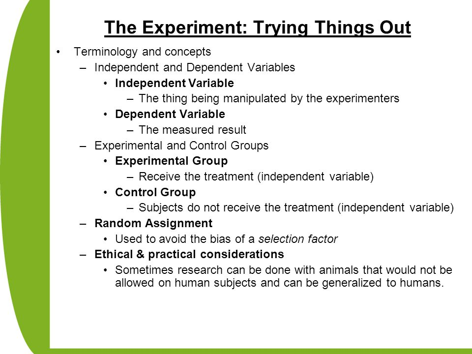 The Experiment: Trying Things Out