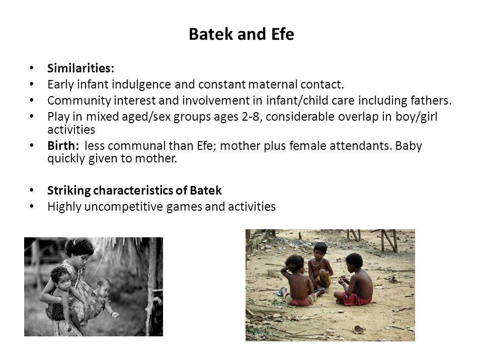 Batek and Efe Similarities: