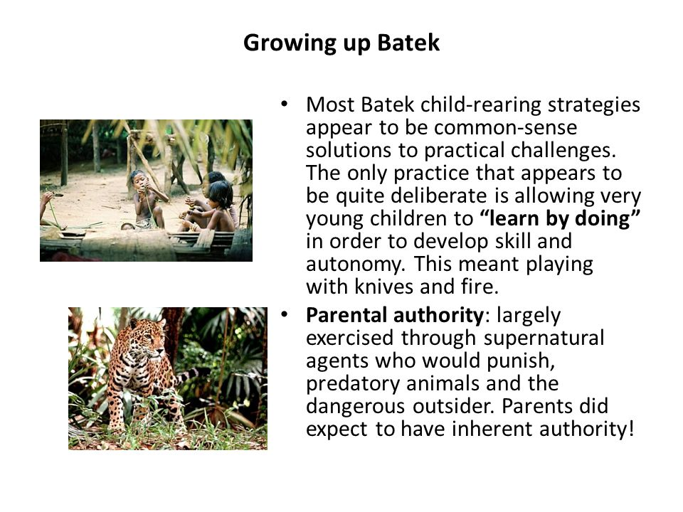 Growing up Batek