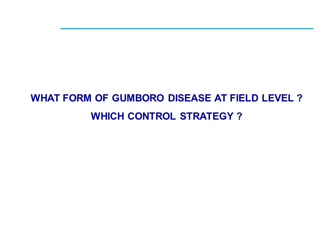 WHAT FORM OF GUMBORO DISEASE AT FIELD LEVEL WHICH CONTROL STRATEGY
