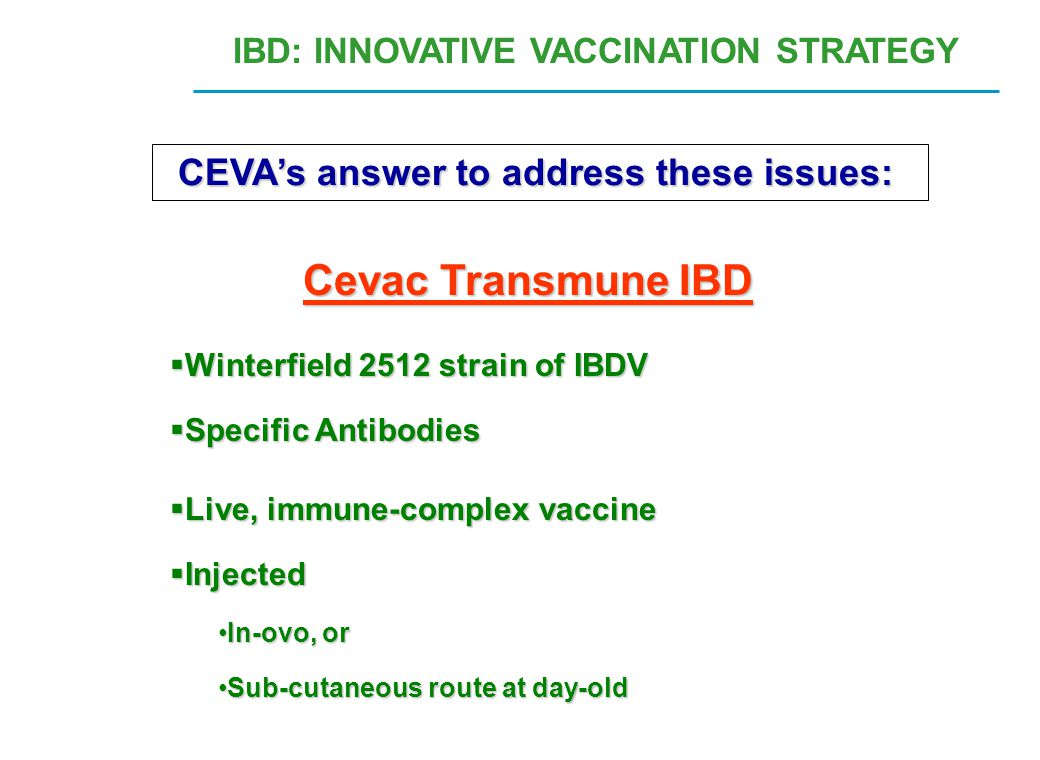 Cevac Transmune IBD CEVA's answer to address these issues: