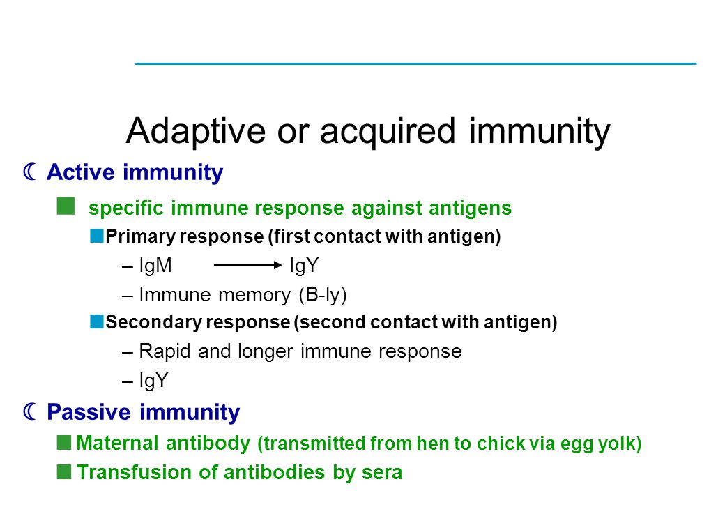 Adaptive or acquired immunity